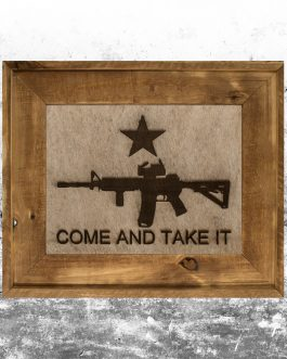 Come & Take It: AR-15