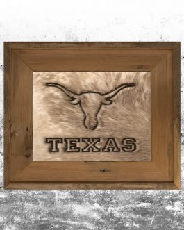 Texas Longhorns UT