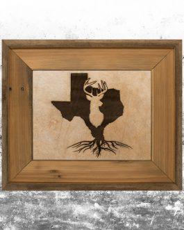 Texas Roots: Deer